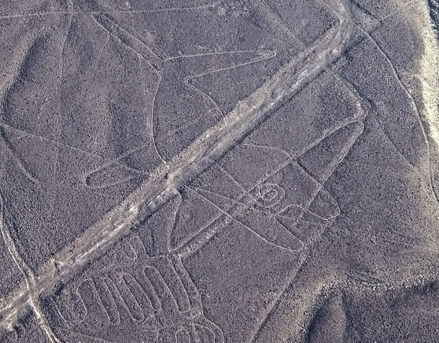 Nazca Lines, The Whale